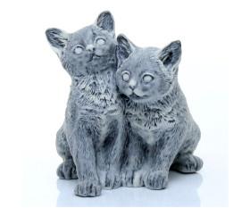 Коты, Кошки