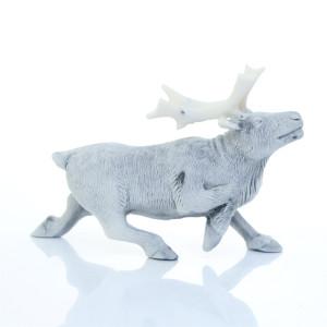 Северный олень бежит